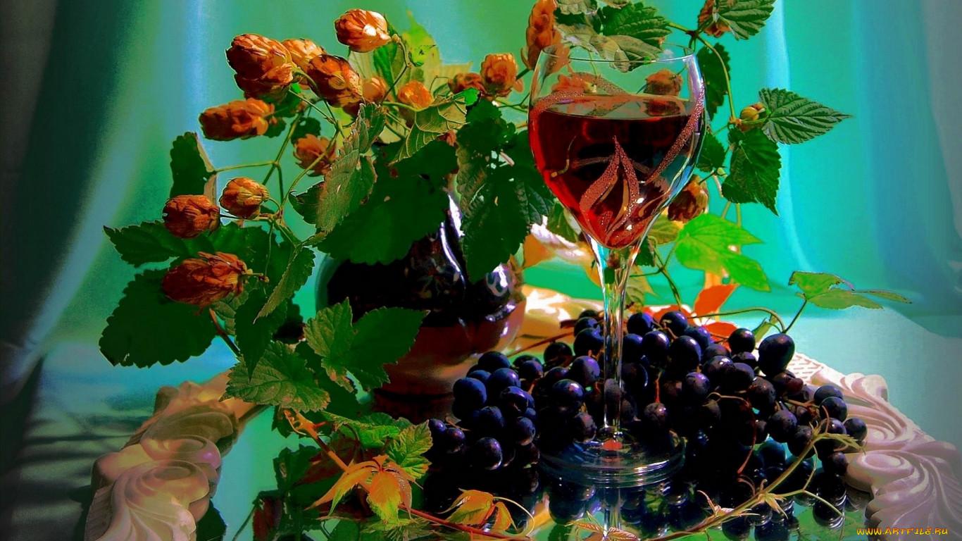 Смородина как лекарственное растение - http://travellingandc.